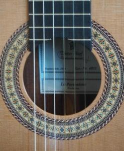 Dieter Hopf luthier Evolucion Portentosa classical guitar
