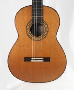 Luthier Dieter Hopf Portentosa Evolucion 2014 No. 4800