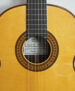 dieter Hopf classical double-top guitar progresso