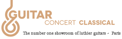 Classical concert guitar